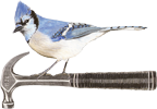 Jay Eckert Constuction Inc. Logo, Blue Jay on Hammer